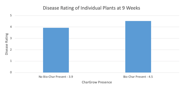 bar chart of plant disease measurement in hemp trial with biochar and microbes
