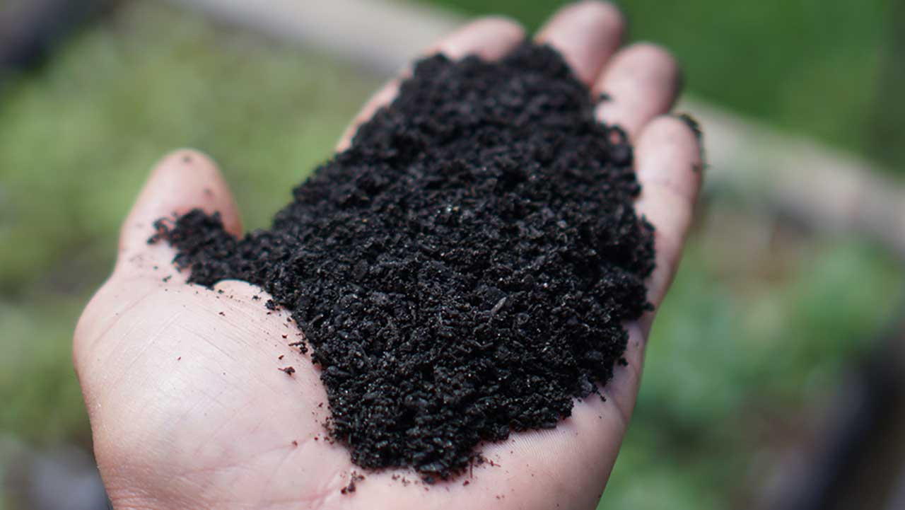 CharGrow BioChar Source product loose in hand